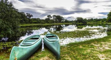 Example private tour: Brazil's Wildlife & Natural Wonders