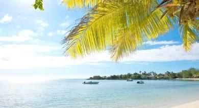 Empfohlene Individualreise, Rundreise: Südafrika und Mauritius – wilde Tiere und tropische Träume