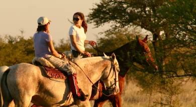 Empfohlene Individualreise, Rundreise: Argentiniens wilde Tierwelt