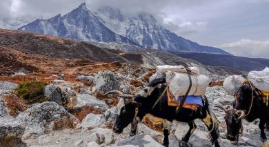 Example private tour: Tibet and Nepal: Himalayan Highlights