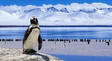 Empfohlene Individualreise, Rundreise: Die Schönheit Patagoniens mit Abstecher in die Antarktis
