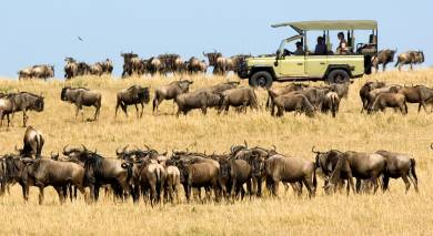 Example private tour: Wild Treasures of Northern Tanzania