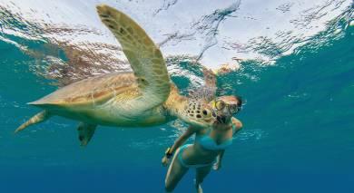 Empfohlene Individualreise, Rundreise: Seychellen – Inselparadies und The Moorings Kreuzfahrt