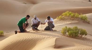 Empfohlene Individualreise, Rundreise: Oman & VAE – Roadtrip auf der Arabischen Halbinsel