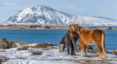 Empfohlene Individualreise, Rundreise: Island Roadtrip – Höhepunkte der Ringstraße