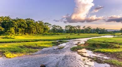 Empfohlene Individualreise, Rundreise: Nepals Kultur- und Naturwunder entdecken