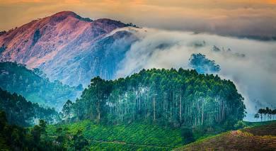 Empfohlene Individualreise, Rundreise: Kerala Rundreise – Tempel, Tee und Traditionen
