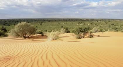 Kalahari Wüste in Namibia