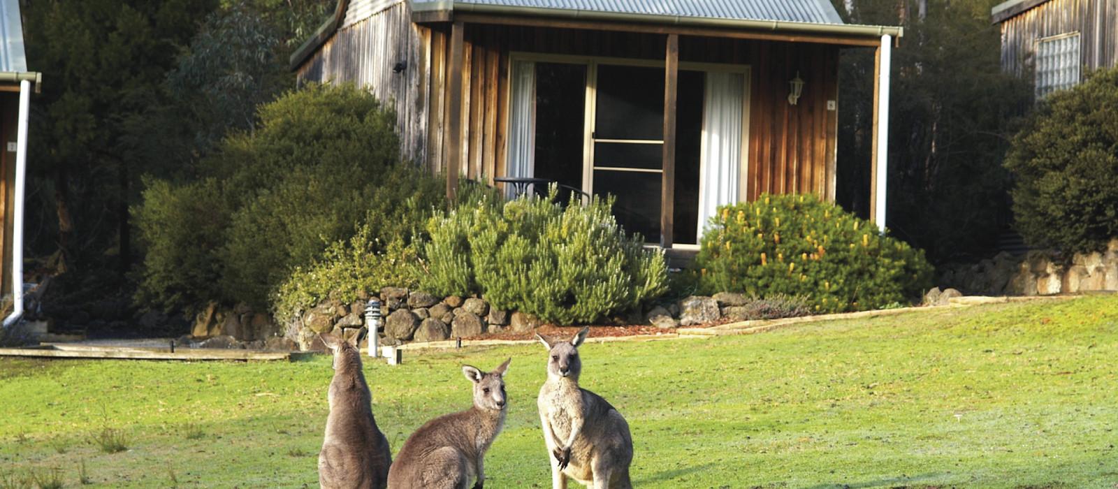 Hotel D'Altons Resort Australia