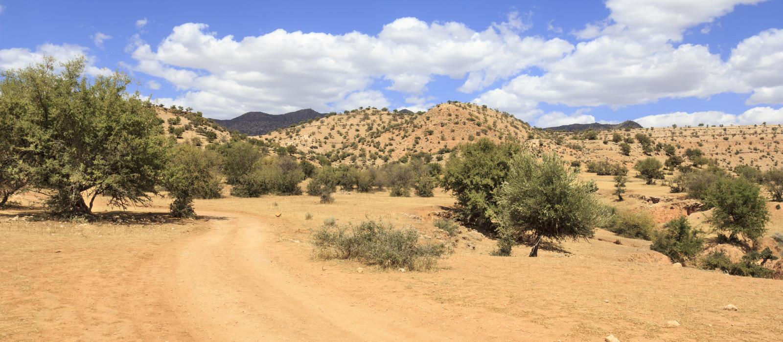 Reiseziel Taroudant Marokko