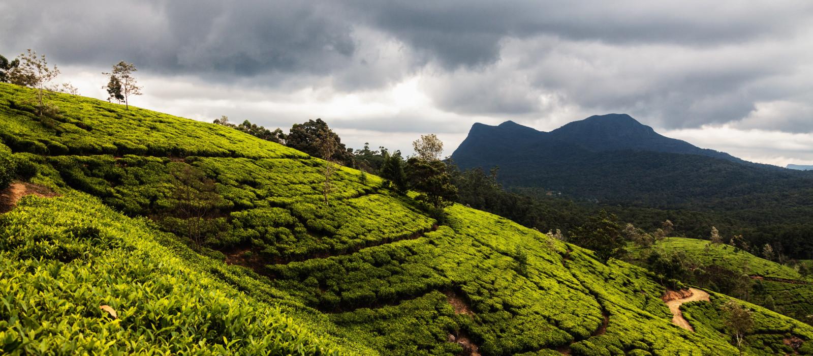 Hotel Araliya Green Hills Sri Lanka