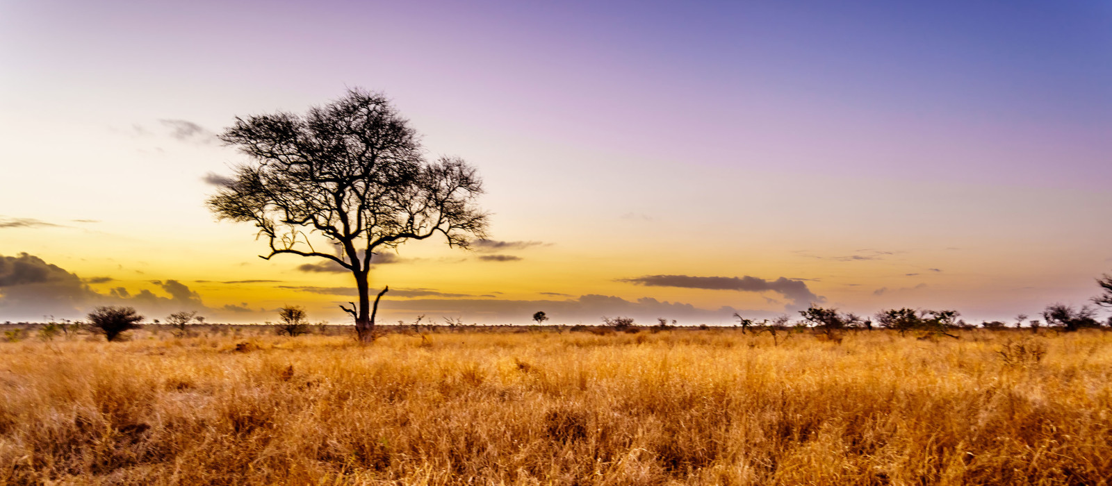 Reiseziel Zentrale Krüger-Region Südafrika