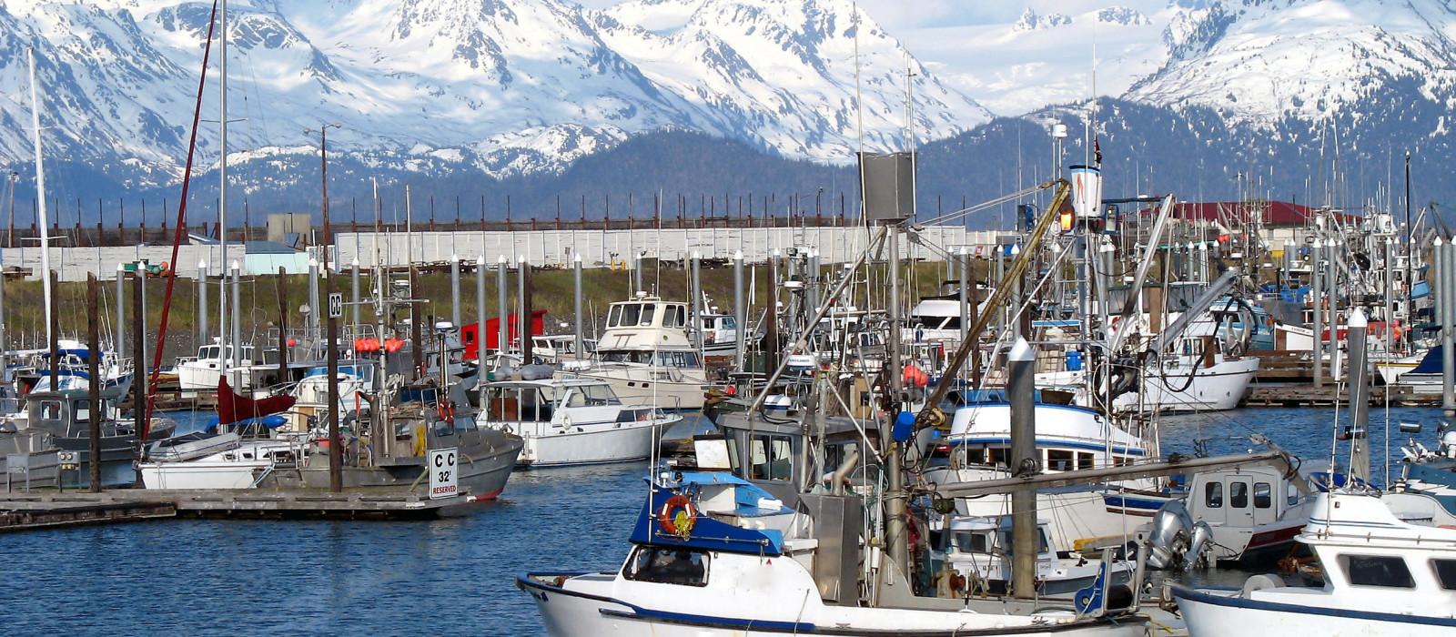 Destination Homer Alaska