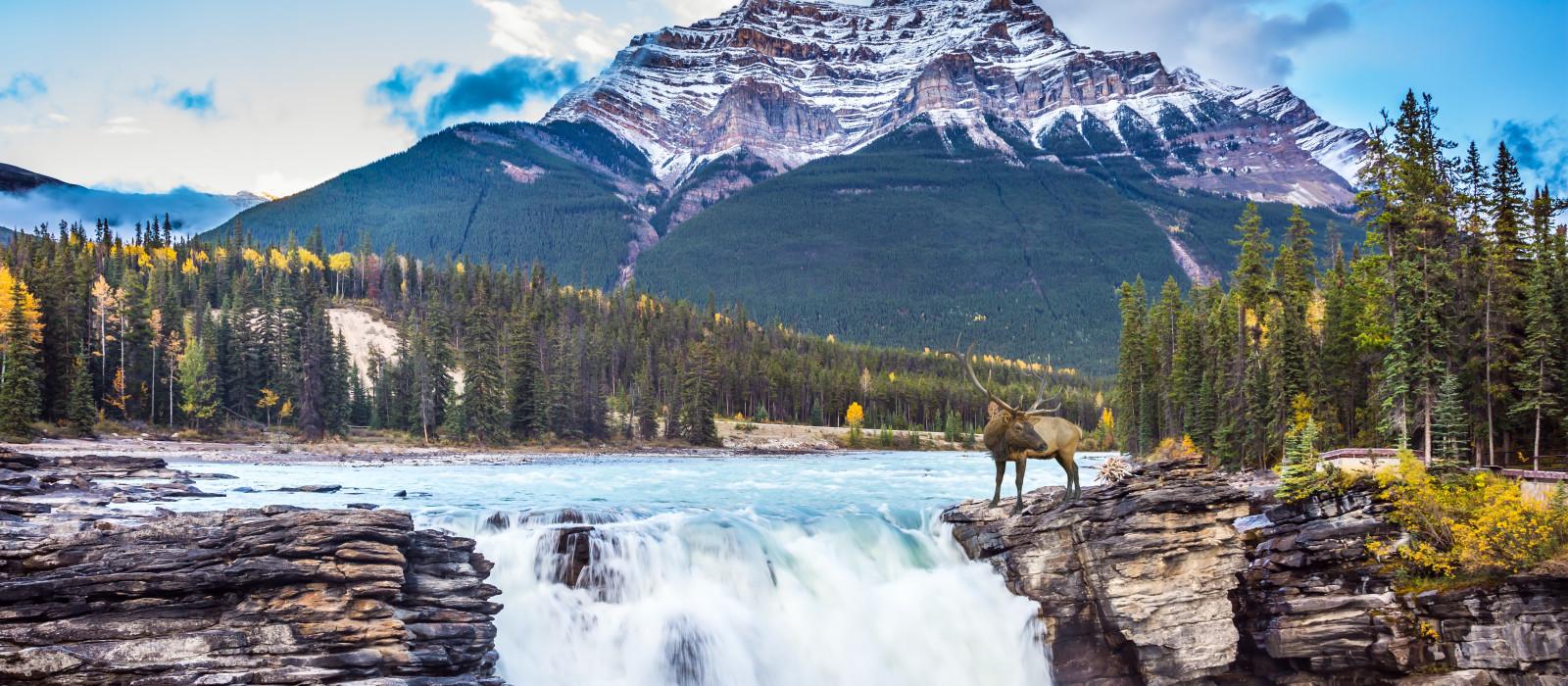 Reiseziel Jasper Kanada
