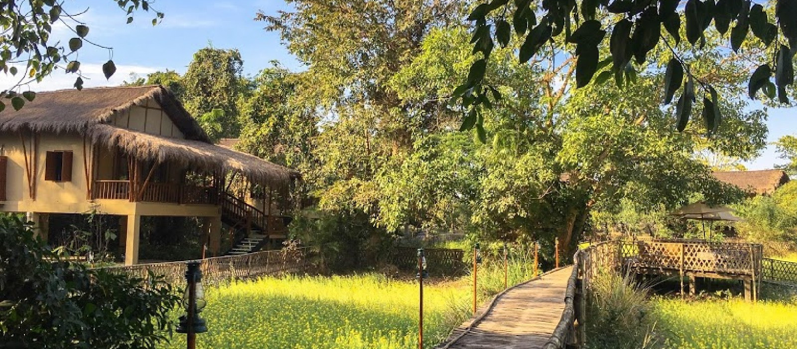 Hotel Diphlu River Lodge Ostindien