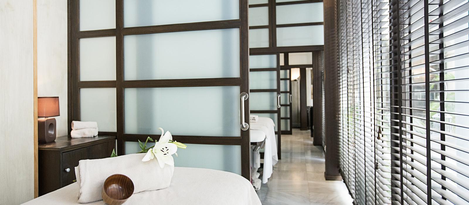 Hotel  Hospes Palacio Del Bailio Spain