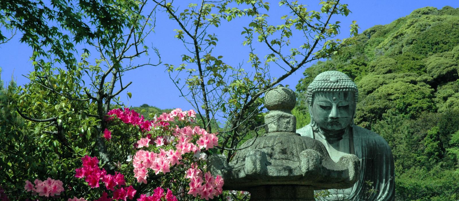 Destination Kamakura Japan