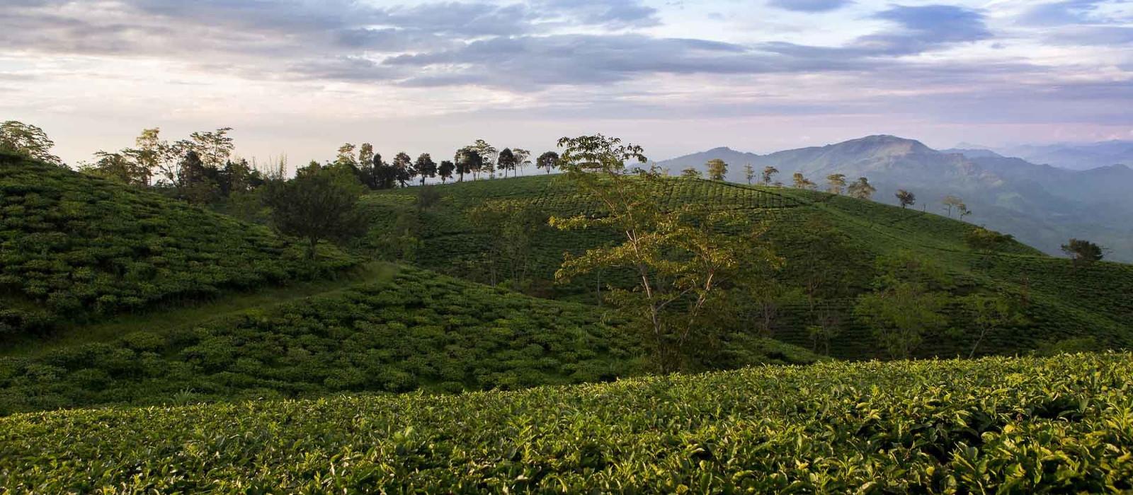 Destination Balipara East India