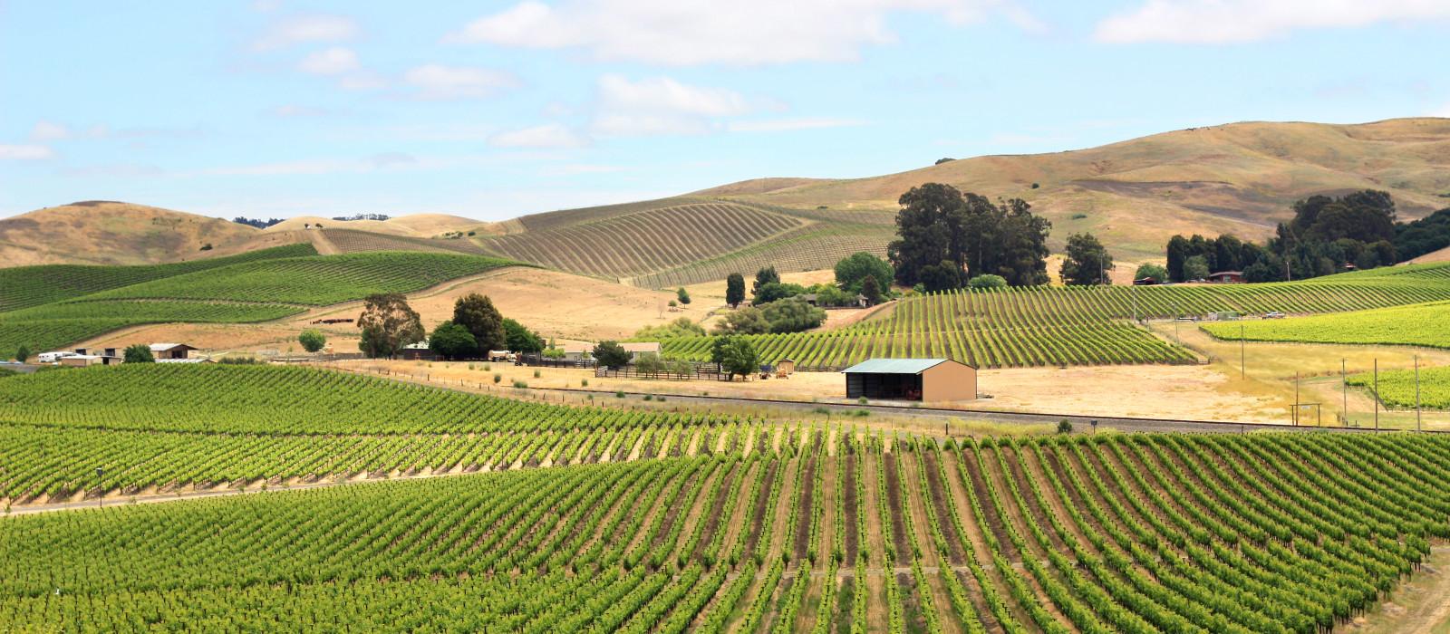 Destination Wine Region USA