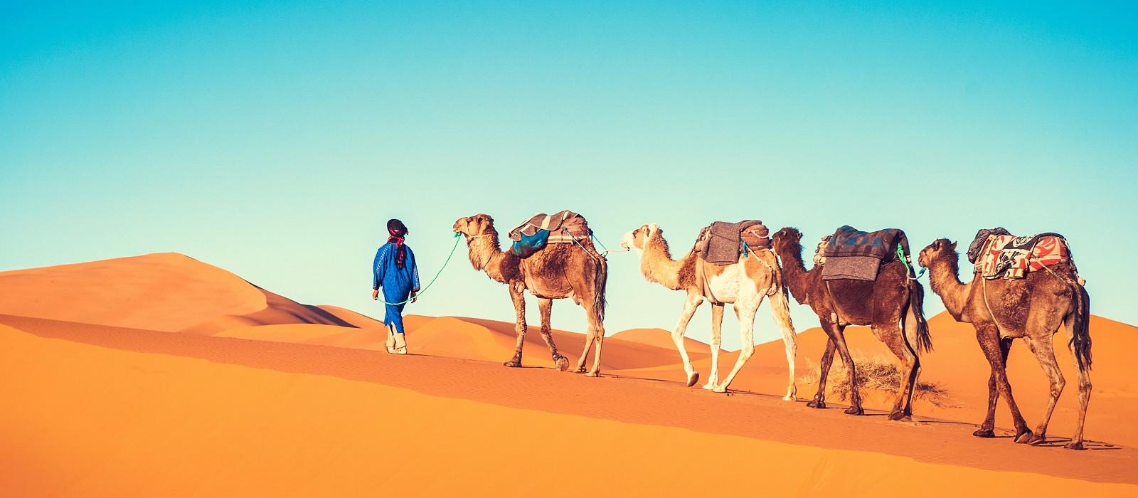 Destination Erg Chegaga Morocco