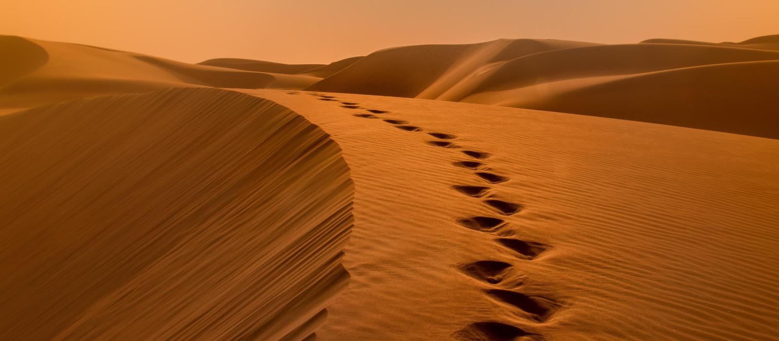 Reiseziel Liwa Vereinigte Arabische Emirate