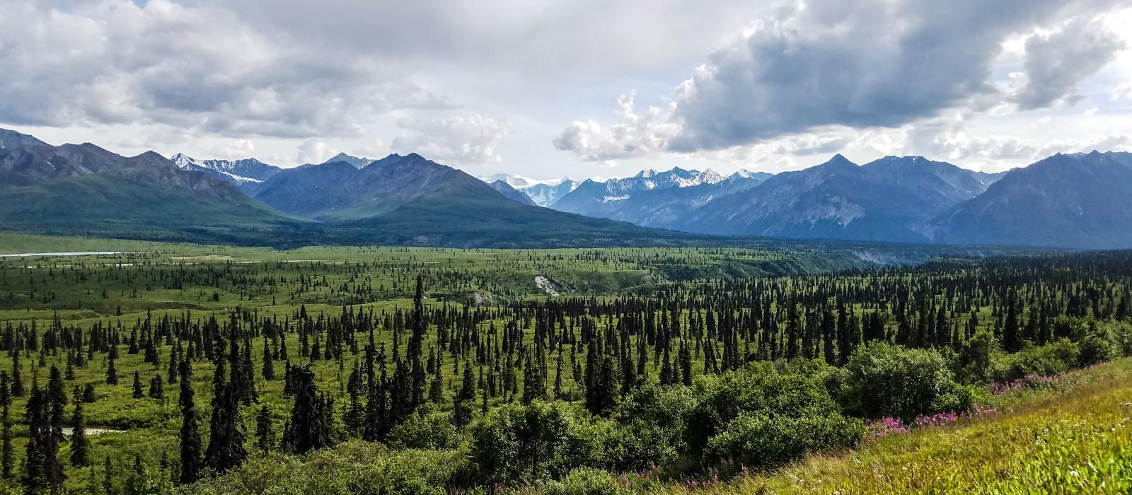 Destination Tok Alaska