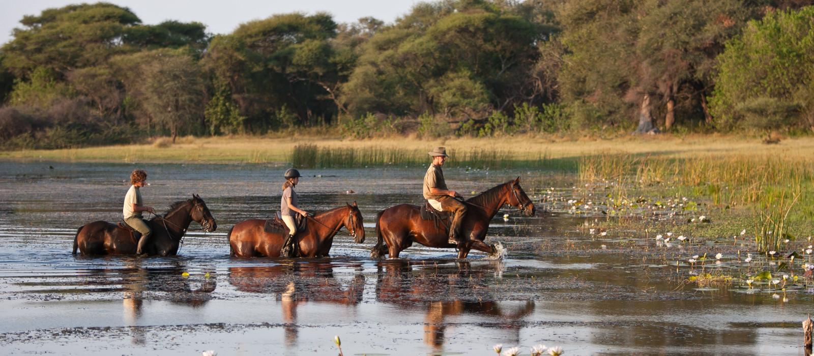 Hotel Thamalakane River Lodge Botswana