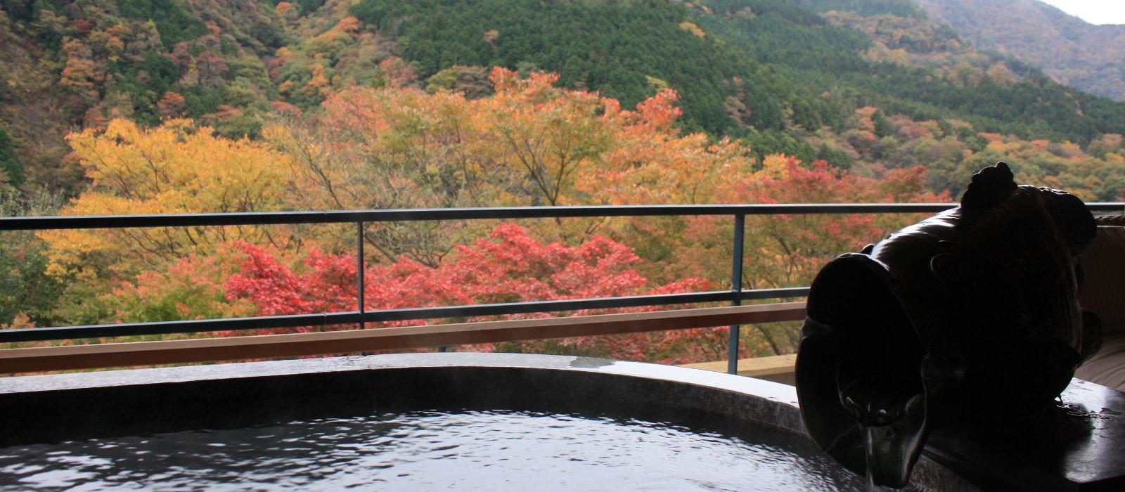 Hotel Hakone Ginyu Spa Resort Japan