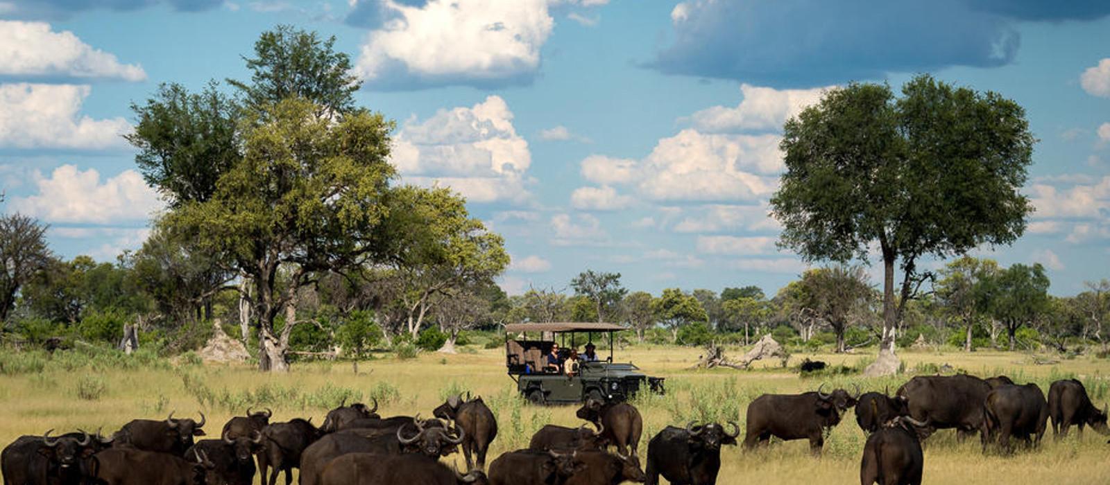 Hotel Little Vumbura Botswana