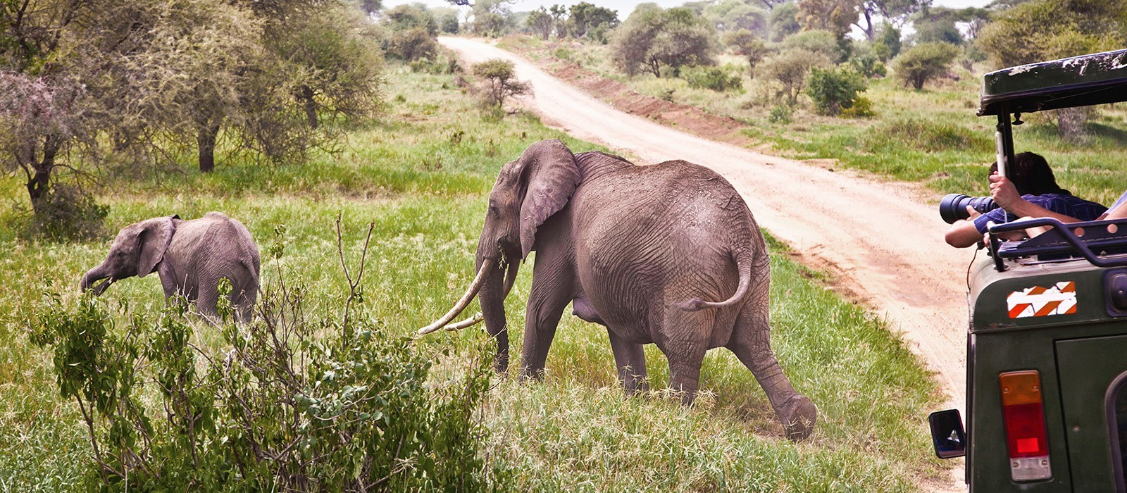 Reiseziel Hluhluwe Südafrika