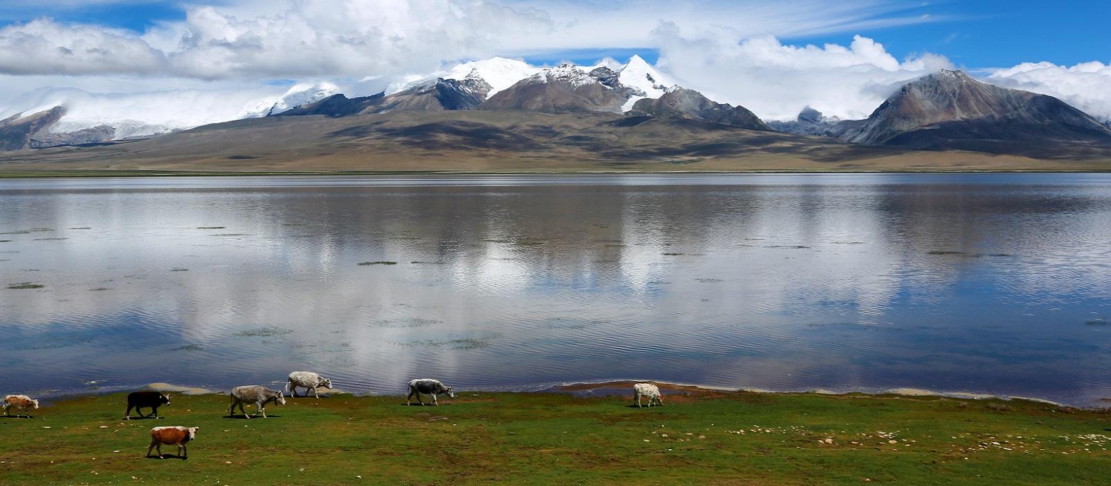 Reiseziel Gyantse Tibet
