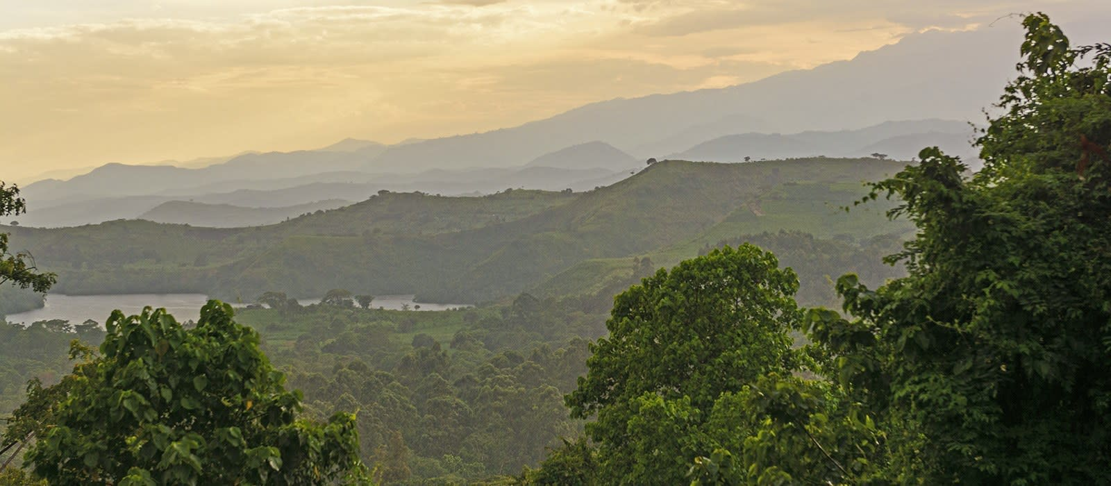 Reiseziel Rwenzori Mountains Uganda
