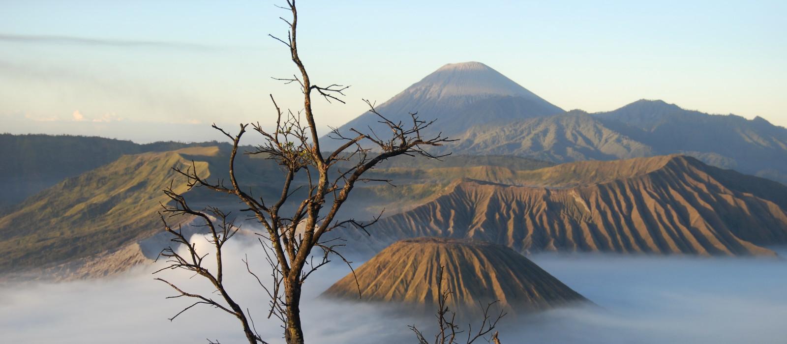 Destination Mt Bromo Indonesia