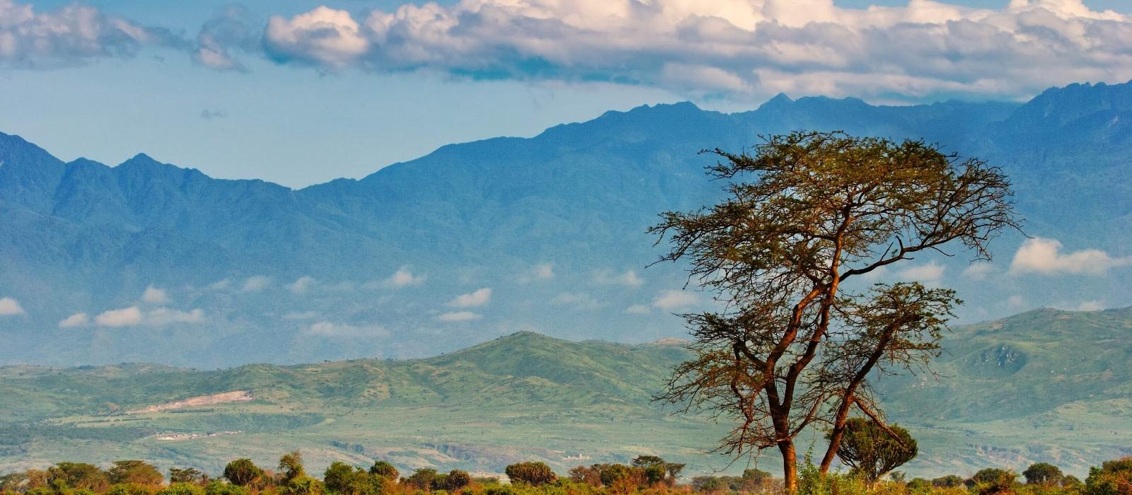 Reiseziel Queen Elizabeth Uganda
