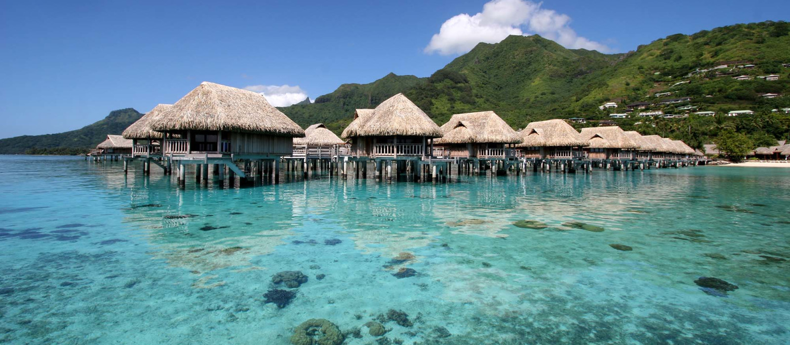 Hotel Sofitel Moorea Ia Ora Beach Resort Französisch Polynesien