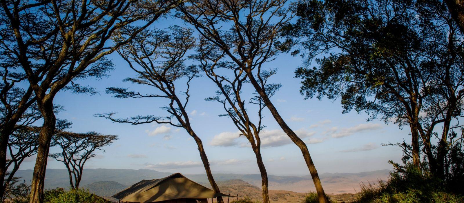 Hotel Entamanu Ngorongoro (FB) (Ngorongoro) Tanzania