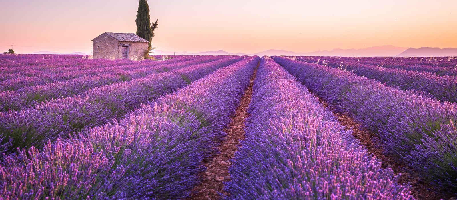 Destination Provence Region France