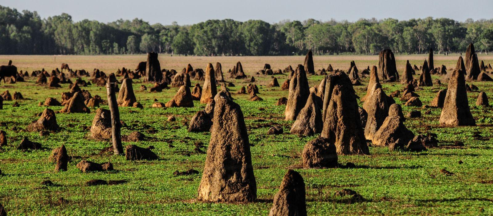 Reiseziel Bamurru Australien