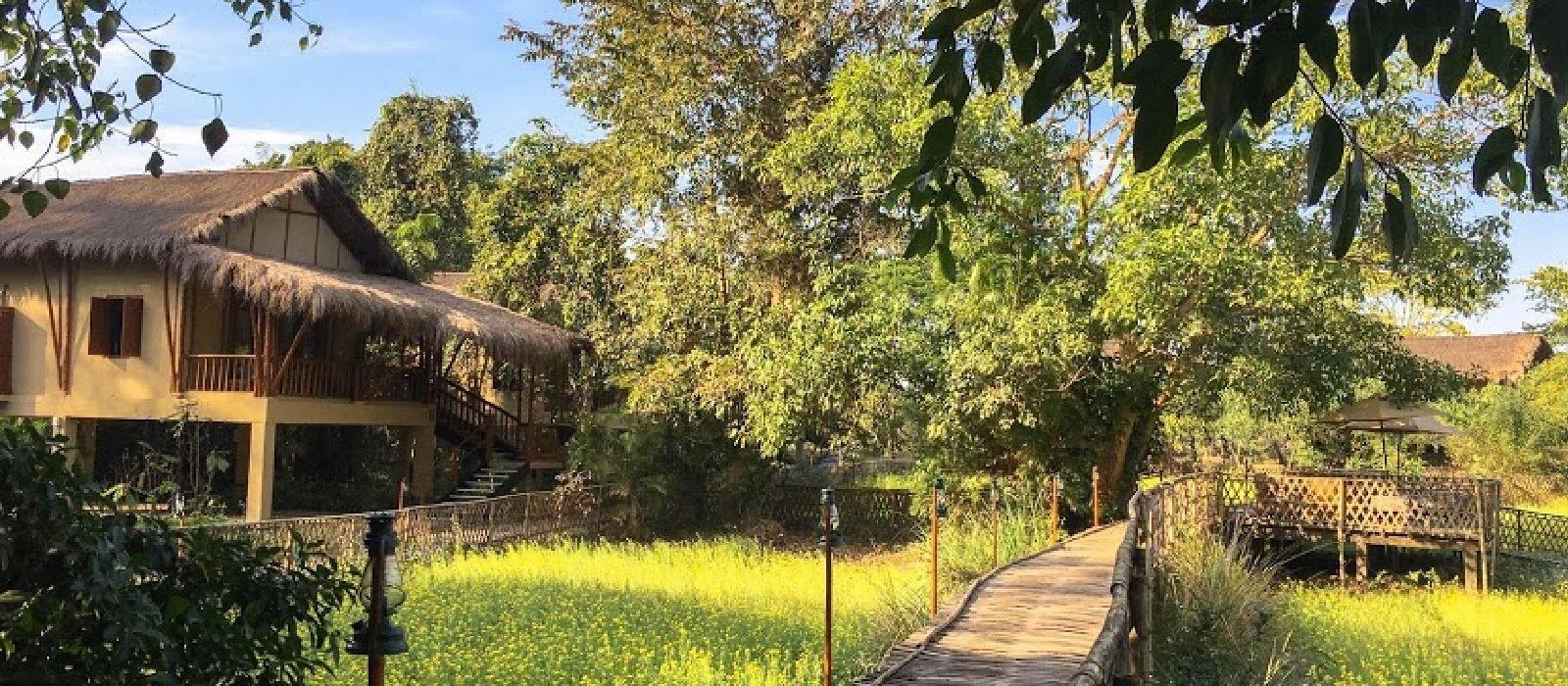 Hotel Diphlu River Lodge East India