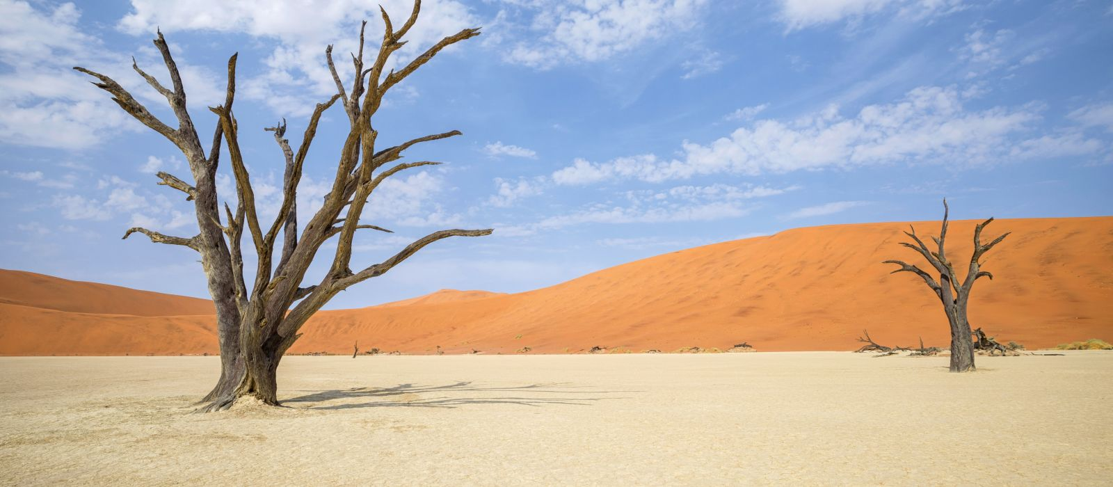 Hotel Desert Quiver Camp Namibia