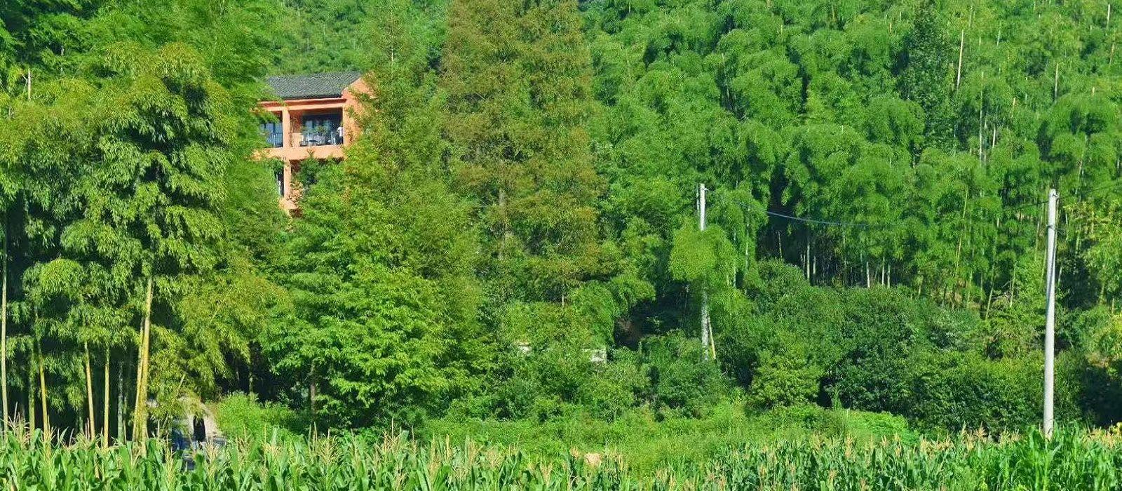 Reiseziel Mogan Shan China
