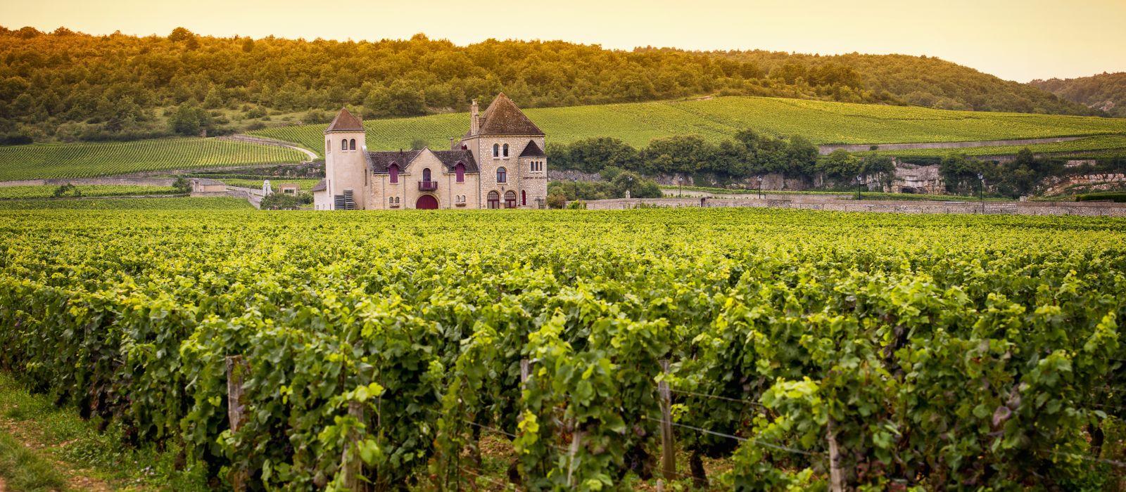 Destination Beaune France