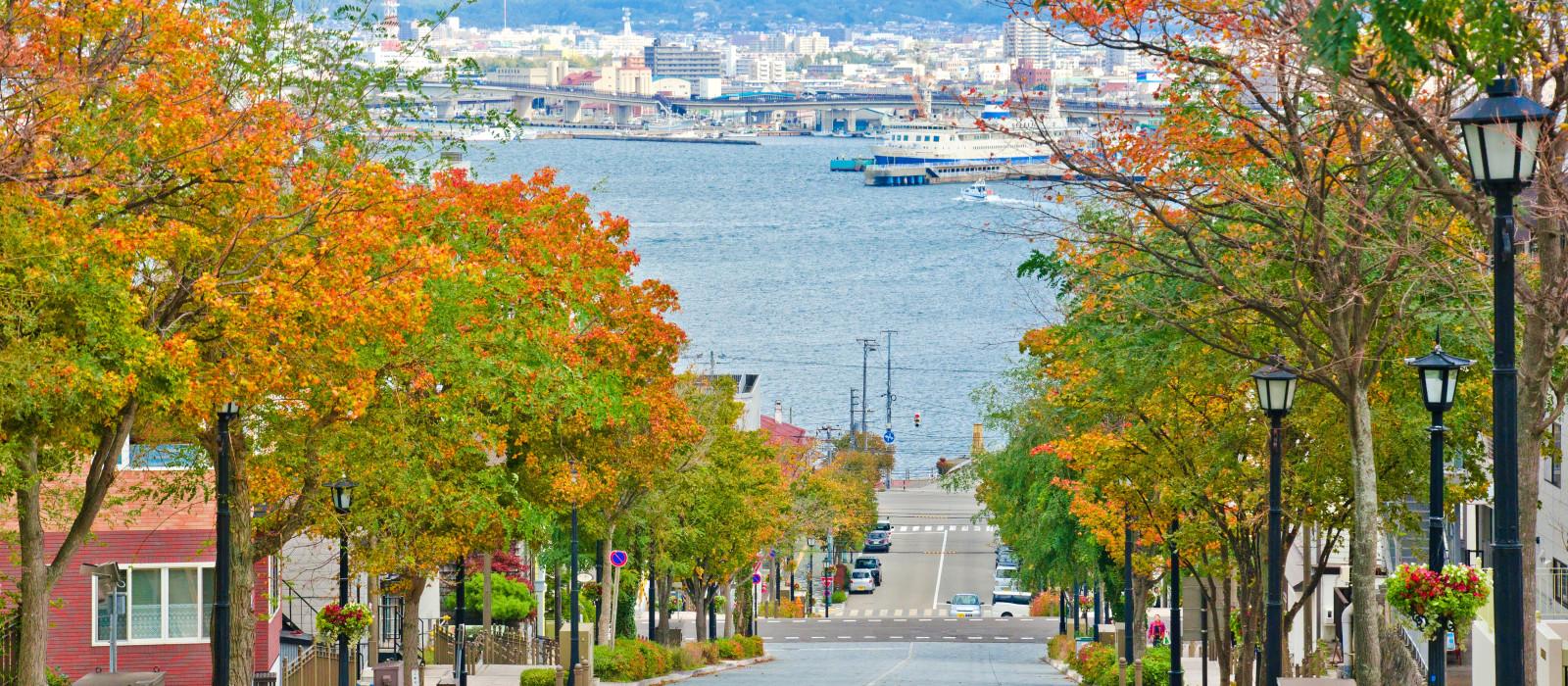 Hotel  Resol Hakodate Japan