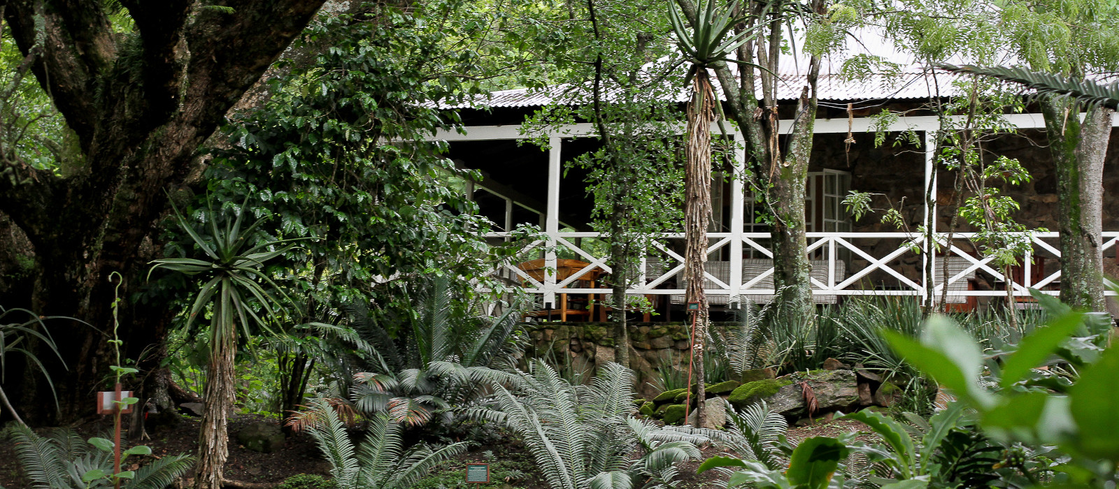Hotel Reilly's Rock Hilltop Lodge Swasiland