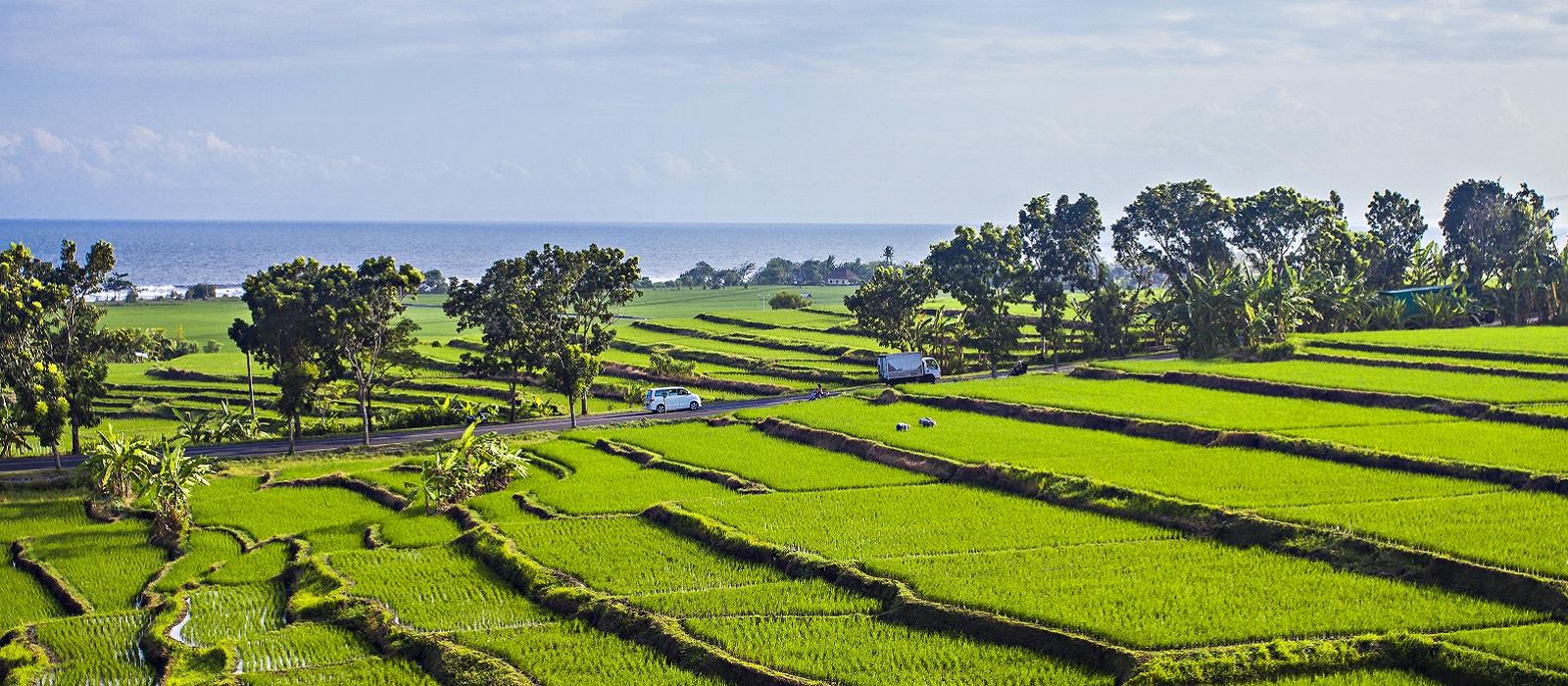 Reiseziel Bali,Jembrana Indonesien