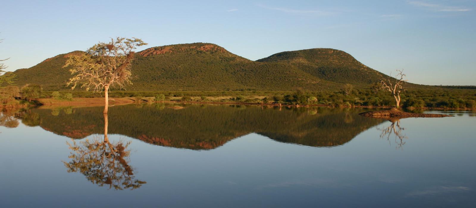Reiseziel Madikwe Wildschutzgebiet Südafrika