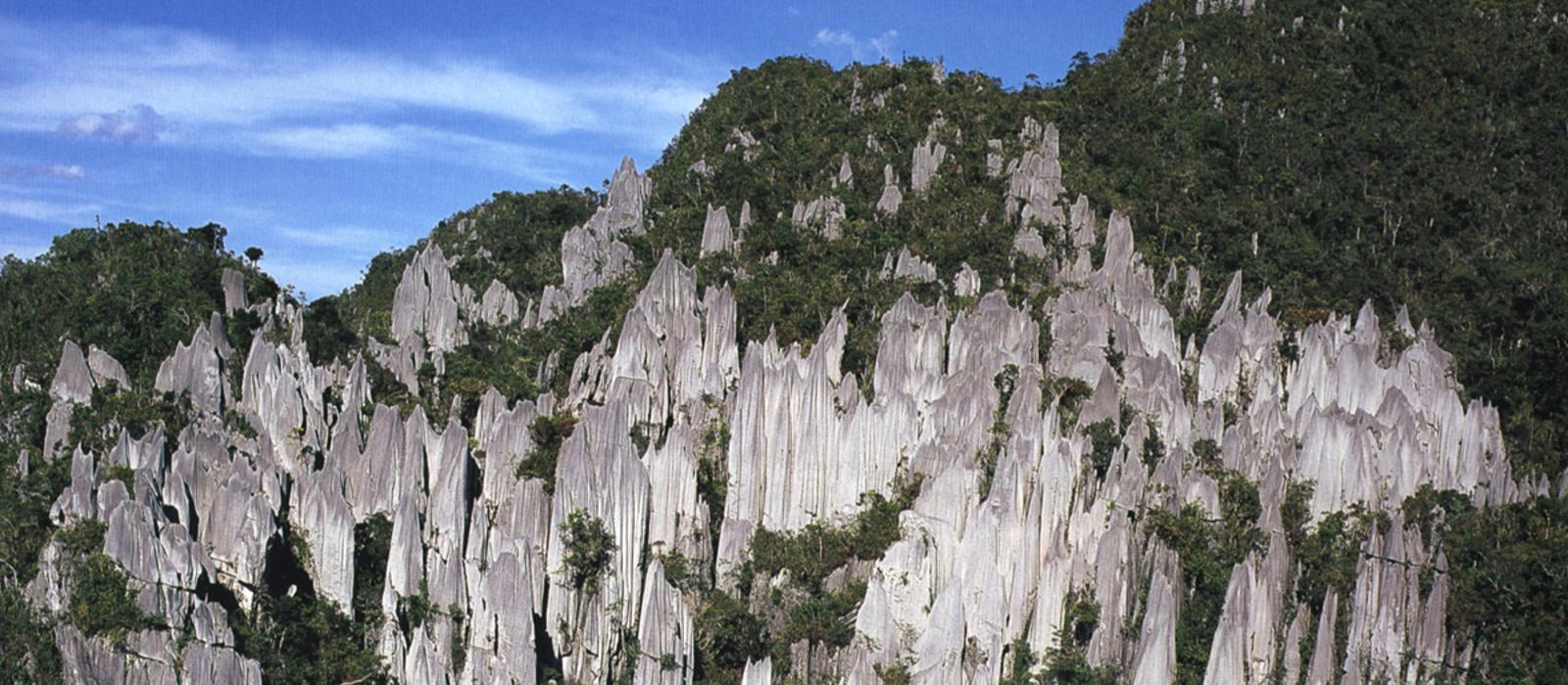 Reiseziel Mulu Malaysia