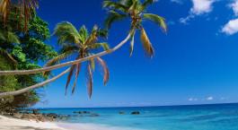 Reiseziel Malolo Fidschi