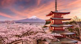 Reiseziel Mt Fuji Japan