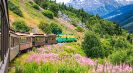 Destination Skagway Alaska